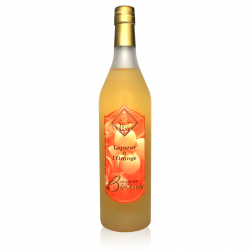 Liqueur à l'orange BIRIUS (70cl)